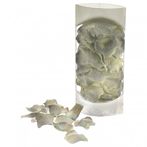 Rosenblüten weiss/creme ca. 4.5 cm,