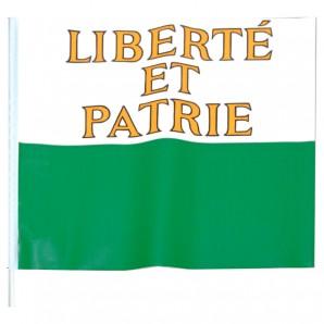 Fahne Waadt, 20x20 cm