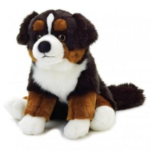 Sennenhund 25cm