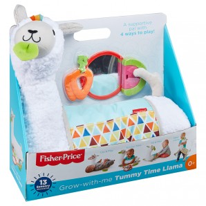 Fisher-Price 4-in-1