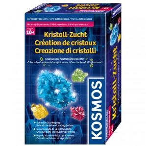 Kristall-Zucht, d/f/i ab 10 Jahren