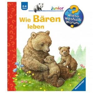 Wie leben die Bären